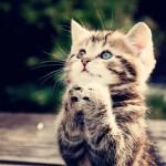 ポジションを伸ばすために祈る